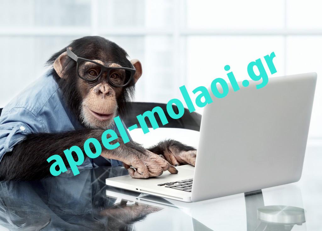 Monkey-PC